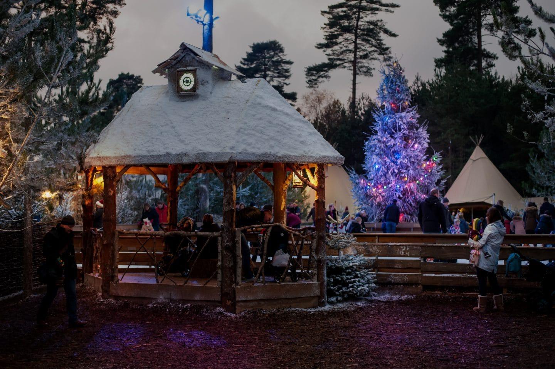 stand-and-christmas-tree
