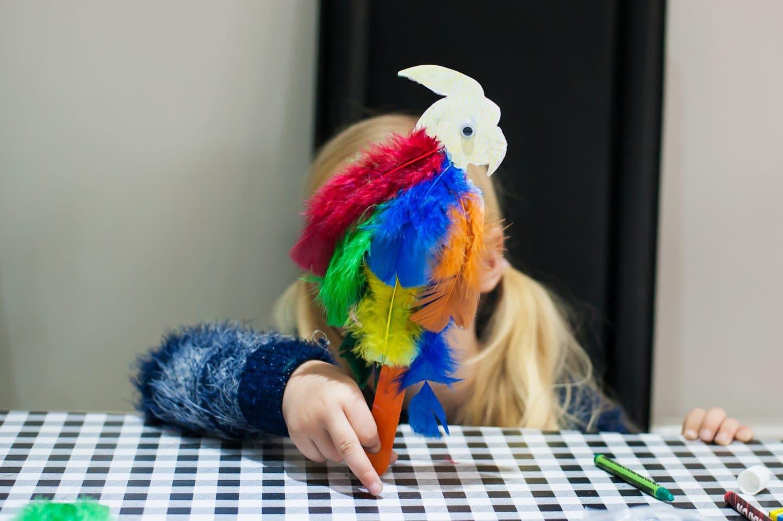 meggys-parrot