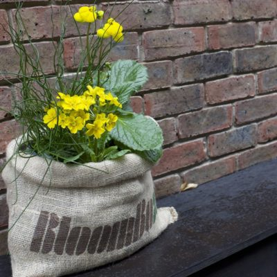 Gardening made easy with BloomBox Club – Giveaway!