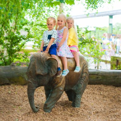 Our trip to Chester Zoo 2017